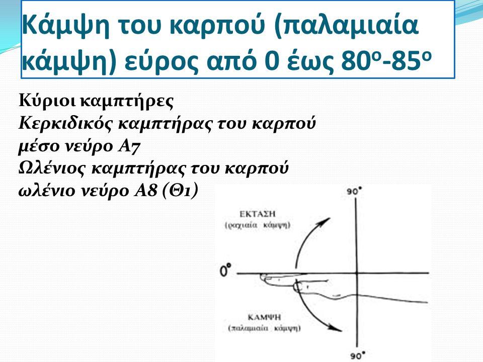 Κάμψη του καρπού (παλαμιαία κάμψη) εύρος από 0 έως 80 ο -85 ο Κύριοι καμπτήρες Κερκιδικός καμπτήρας του καρπού μέσο νεύρο Α7 Ωλένιος καμπτήρας του καρπού ωλένιο νεύρο Α8 (Θ1)