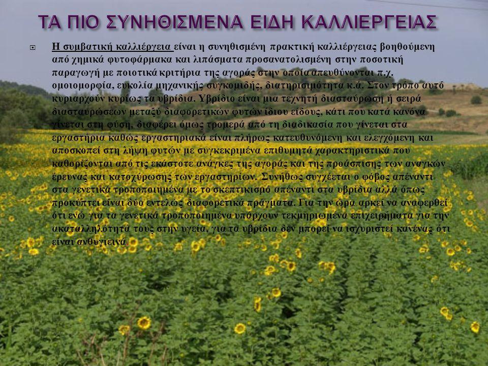 Η συμβατική καλλιέργεια είναι η συνηθισμένη πρακτική καλλιέργειας βοηθούμενη από χημικά φυτοφάρμακα και λιπάσματα προσανατολισμένη στην ποσοτική παραγωγή με ποιοτικά κριτήρια της αγοράς στην οποία απευθύνονται π.