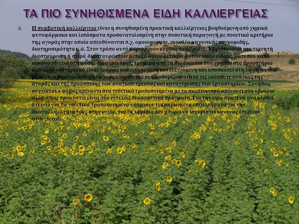  Η συμβατική καλλιέργεια είναι η συνηθισμένη πρακτική καλλιέργειας βοηθούμενη από χημικά φυτοφάρμακα και λιπάσματα προσανατολισμένη στην ποσοτική παρ