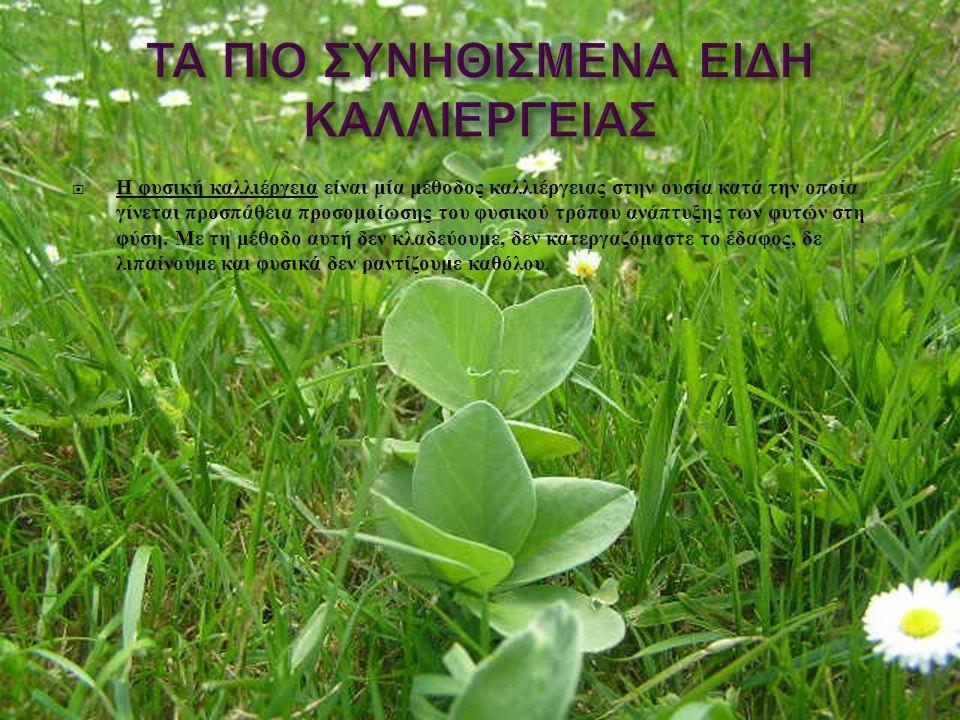  Η φυσική καλλιέργεια είναι μία μέθοδος καλλιέργειας στην ουσία κατά την οποία γίνεται προσπάθεια προσομοίωσης του φυσικού τρόπου ανάπτυξης των φυτών