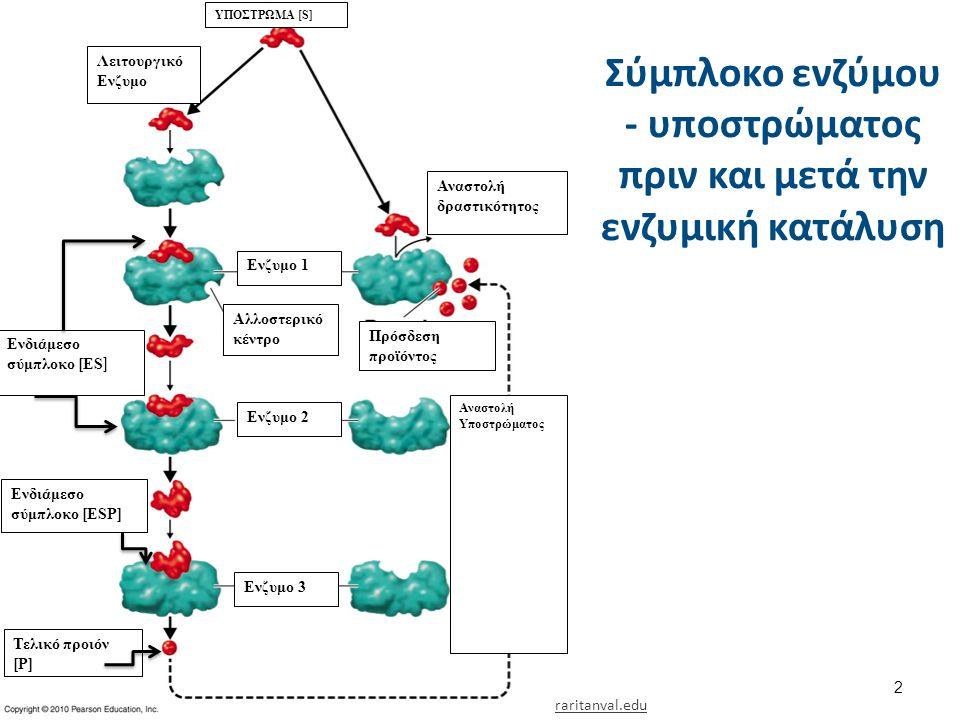 Σύμπλοκο ενζύμου - υποστρώματος πριν και μετά την ενζυμική κατάλυση 2 raritanval.edu ΥΠΟΣΤΡΩΜΑ [S] Λειτουργικό Ενζυμο Ενδιάμεσο σύμπλοκο [ΕS ] Ενδιάμεσο σύμπλοκο [ΕSP] Τελικό προιόν [P] Ενζυμο 1 Ενζυμο 2 Ενζυμο 3 Αναστολή Υποστρώματος Αλλοστερικό κέντρο Πρόσδεση προϊόντος Αναστολή δραστικότητος