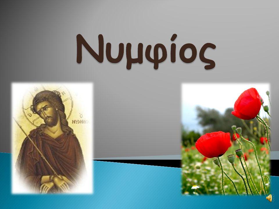 Την Κυριακή των Βαΐων ο Χριστός πήγε στα Ιεροσόλυμα καθισμένος πάνω σε ένα γαϊδουράκι. Ο κόσμος Τον υποδέχτηκε στρώνοντας στη γη Βάϊα επειδή Τον θεωρο