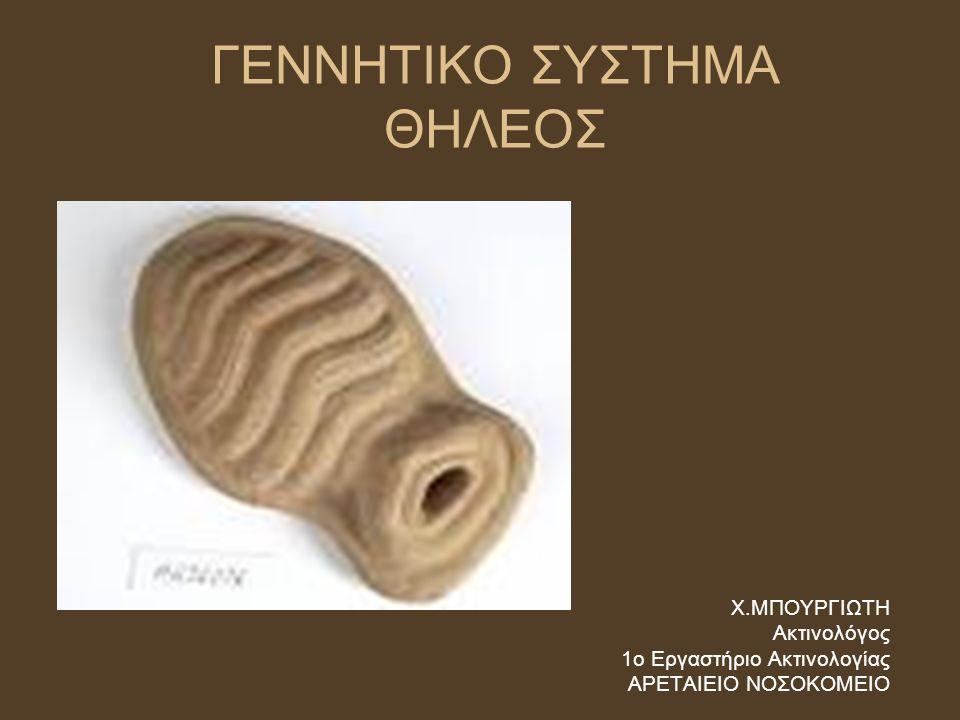 ΑΝΑΤΟΜΙΑ ΘΗΛΕΟΣ