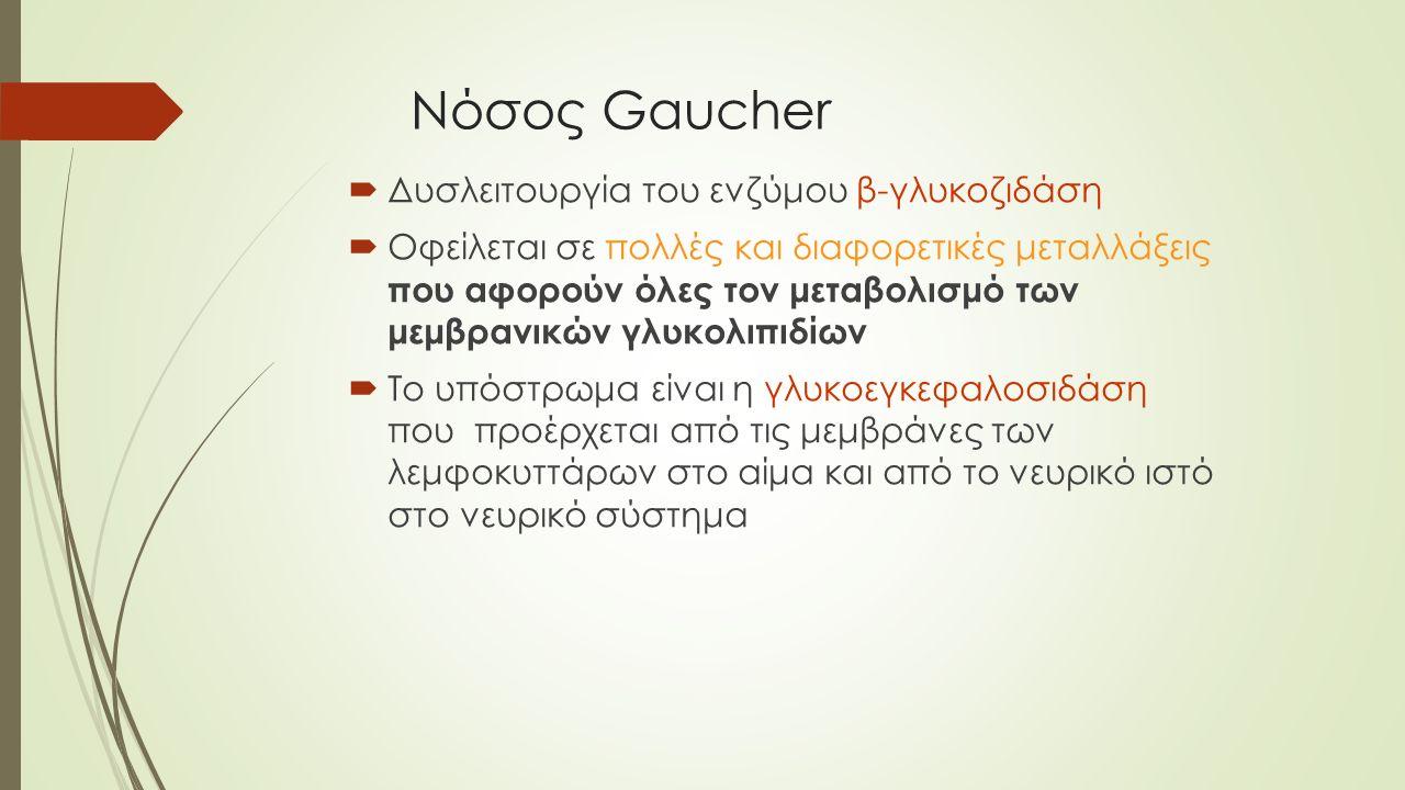 Νόσος Gaucher  Δυσλειτουργία του ενζύμου β-γλυκοζιδάση  Οφείλεται σε πολλές και διαφορετικές μεταλλάξεις που αφορούν όλες τον μεταβολισμό των μεμβρα