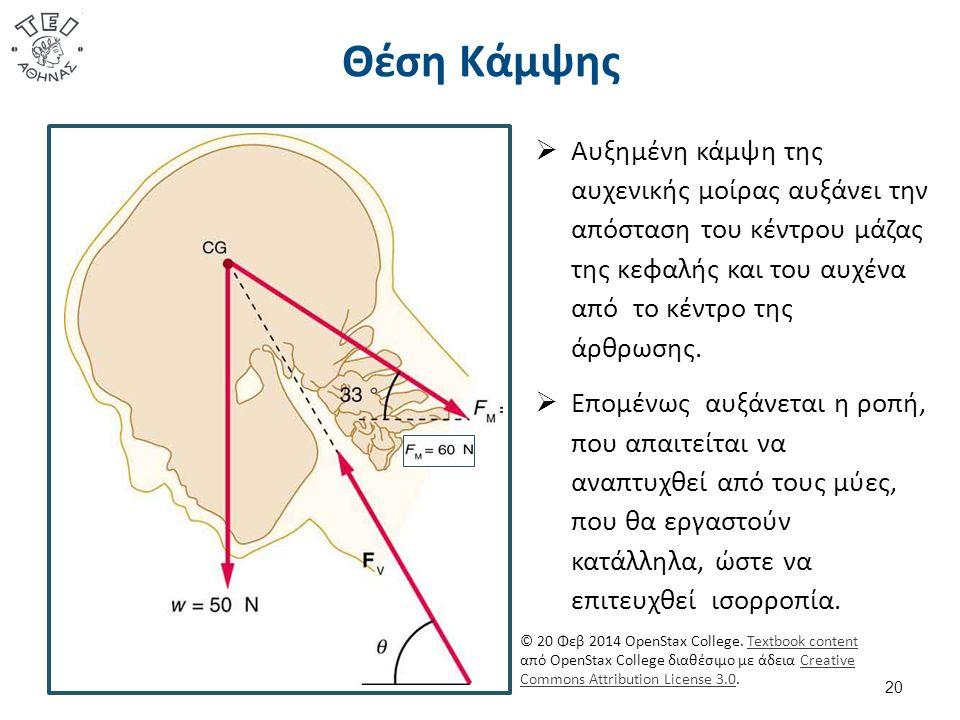 Θέση Κάμψης 20  Αυξημένη κάμψη της αυχενικής μοίρας αυξάνει την απόσταση του κέντρου μάζας της κεφαλής και του αυχένα από το κέντρο της άρθρωσης.