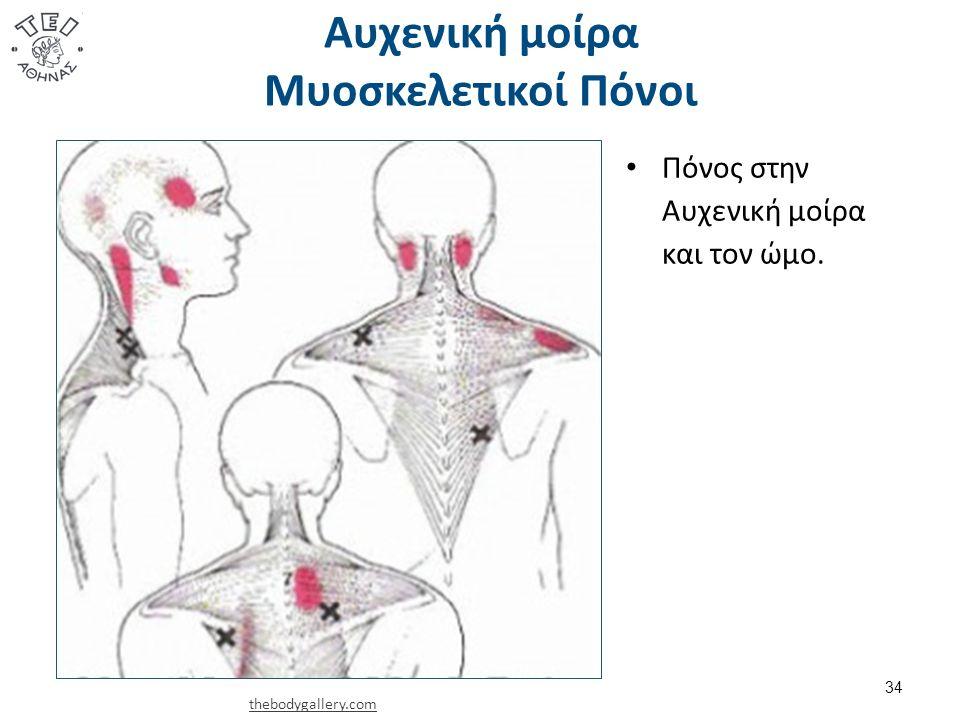 Αυχενική μοίρα Μυοσκελετικοί Πόνοι 34 Πόνος στην Αυχενική μοίρα και τον ώμο. thebodygallery.com