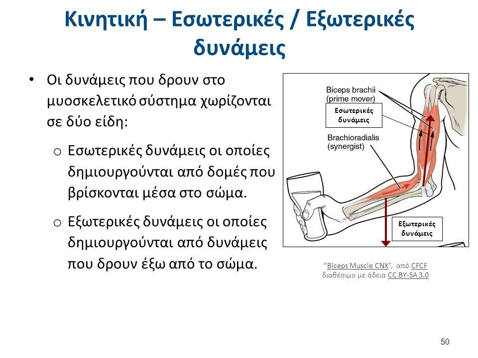 Κινητική – Εσωτερικές / Εξωτερικές δυνάμεις Οι δυνάμεις που δρουν στο μυοσκελετικό σύστημα χωρίζονται σε δύο είδη: o Εσωτερικές δυνάμεις οι οποίες δημιουργούνται από δομές που βρίσκονται μέσα στο σώμα.