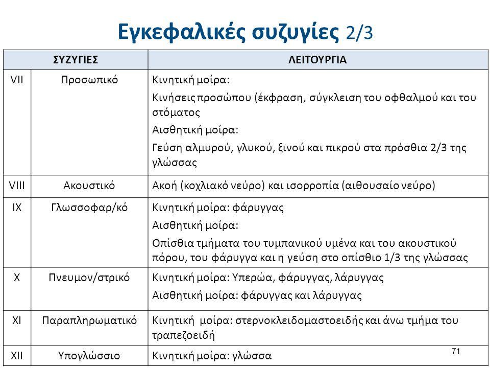 Εγκεφαλικές συζυγίες 2/3 ΣΥΖΥΓΙΕΣΛΕΙΤΟΥΡΓΙΑ VIIΠροσωπικόΚινητική μοίρα: Κινήσεις προσώπου (έκφραση, σύγκλειση του οφθαλμού και του στόματος Αισθητική μοίρα: Γεύση αλμυρού, γλυκού, ξινού και πικρού στα πρόσθια 2/3 της γλώσσας VIIIΑκουστικόΑκοή (κοχλιακό νεύρο) και ισορροπία (αιθουσαίο νεύρο) IXΓλωσσοφαρ/κόΚινητική μοίρα: φάρυγγας Αισθητική μοίρα: Οπίσθια τμήματα του τυμπανικού υμένα και του ακουστικού πόρου, του φάρυγγα και η γεύση στο οπίσθιο 1/3 της γλώσσας XΠνευμον/στρικόΚινητική μοίρα: Υπερώα, φάρυγγας, λάρυγγας Αισθητική μοίρα: φάρυγγας και λάρυγγας XIΠαραπληρωματικόΚινητική μοίρα: στερνοκλειδομαστοειδής και άνω τμήμα του τραπεζοειδή XIIΥπογλώσσιοΚινητική μοίρα: γλώσσα 71
