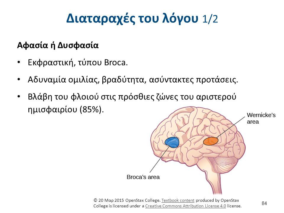 84 Διαταραχές του λόγου 1/2 Αφασία ή Δυσφασία Εκφραστική, τύπου Broca. Αδυναμία ομιλίας, βραδύτητα, ασύντακτες προτάσεις. Βλάβη του φλοιού στις πρόσθι