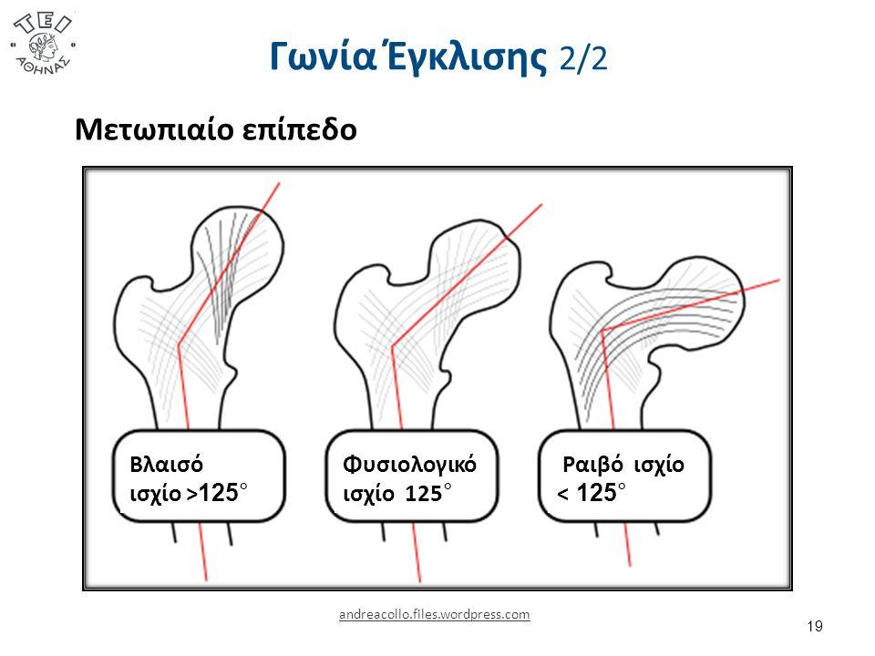 Γωνία Έγκλισης 2/2 19 andreacollo.files.wordpress.com Φυσιολογικό ισχίο 125 ° Ραιβό ισχίο < 125° Βλαισό ισχίο > 125° Μετωπιαίο επίπεδο