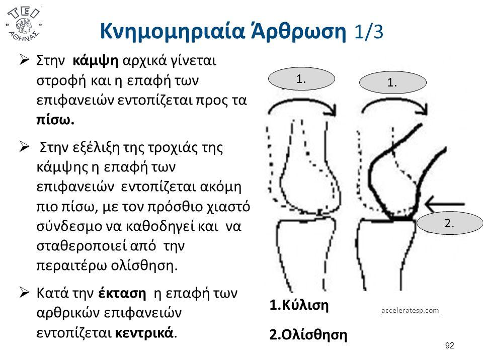 Κνημομηριαία Άρθρωση 1/3  Στην κάμψη αρχικά γίνεται στροφή και η επαφή των επιφανειών εντοπίζεται προς τα πίσω.
