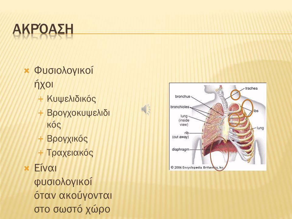 Οι αναπνευστικοί ήχοι παράγονται από τη στροβιλώδη ροή του αέρα στο φάρυγγα και στις μεγάλες αναπνευστικές οδούς 1.