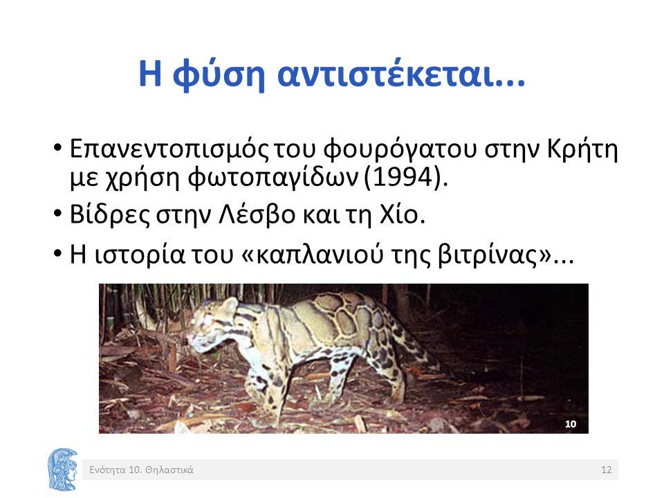 Η φύση αντιστέκεται... Επανεντοπισμός του φουρόγατου στην Κρήτη με χρήση φωτοπαγίδων (1994). Βίδρες στην Λέσβο και τη Χίο. Η ιστορία του «καπλανιού τη