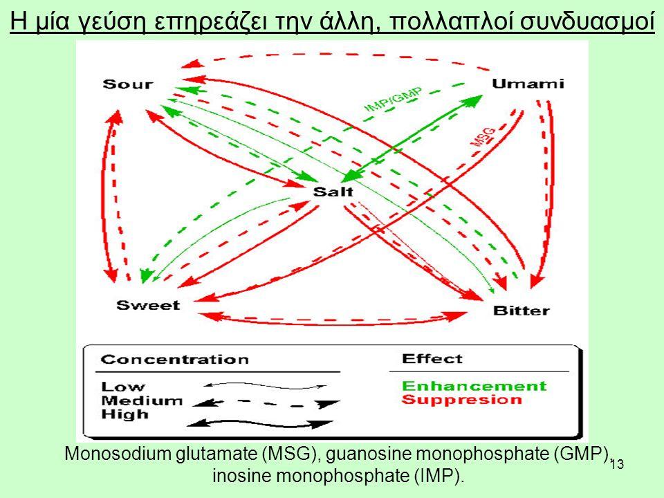 13 Η μία γεύση επηρεάζει την άλλη, πολλαπλοί συνδυασμοί Μonosodium glutamate (MSG), guanosine monophosphate (GMP), inosine monophosphate (IMP).