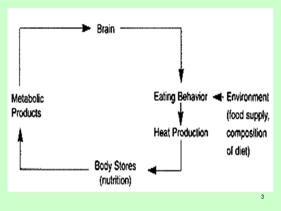 4 Πρόσληψη τροφής και σωματικό βάρος Υπάρχουν μηχανισμοί που τροποποιούν το «κατώφλι» εμφάνισης της πείνας και του κορεσμού.