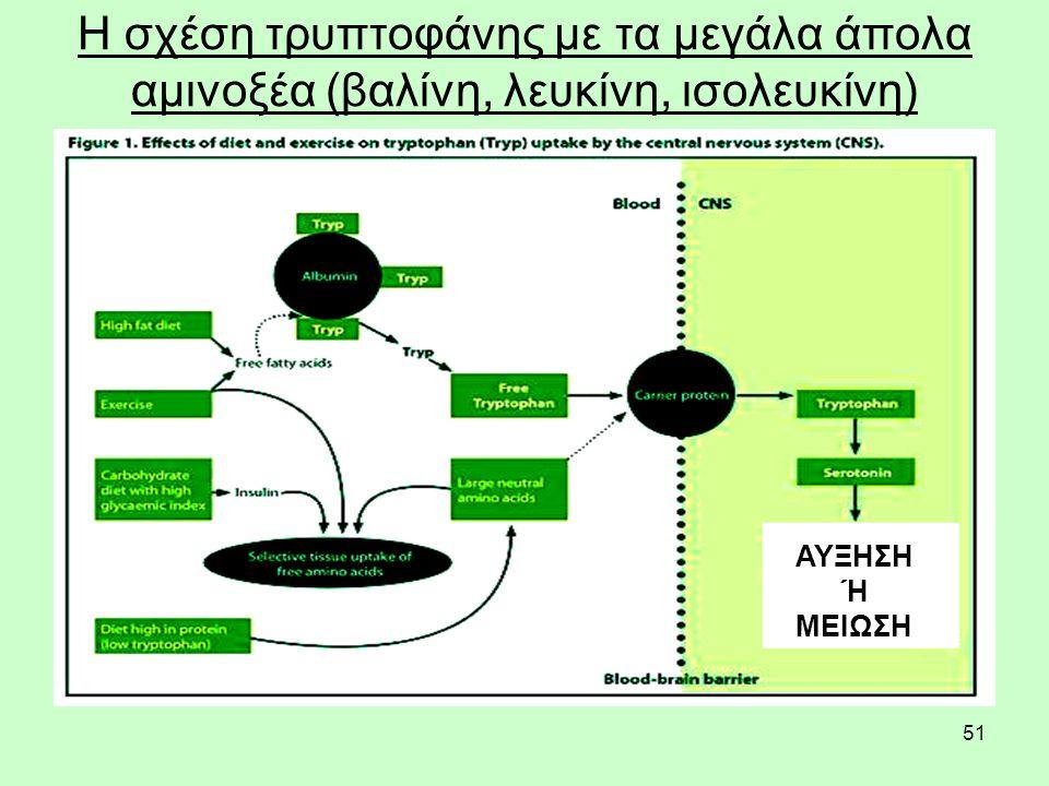51 Η σχέση τρυπτοφάνης με τα μεγάλα άπολα αμινοξέα (βαλίνη, λευκίνη, ισολευκίνη) ΑΥΞΗΣΗ Ή ΜΕΙΩΣΗ