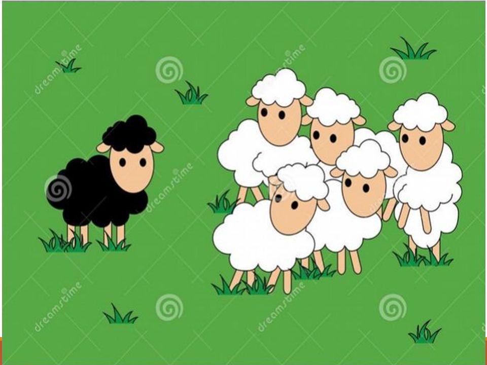Μια φορά και έναν καιρό σε ένα αγρόκτημα μαζί με τα τέσσερα άσπρα σαν χιόνι αδερφάκια του γεννήθηκε ένα μαύρο προβατάκι.