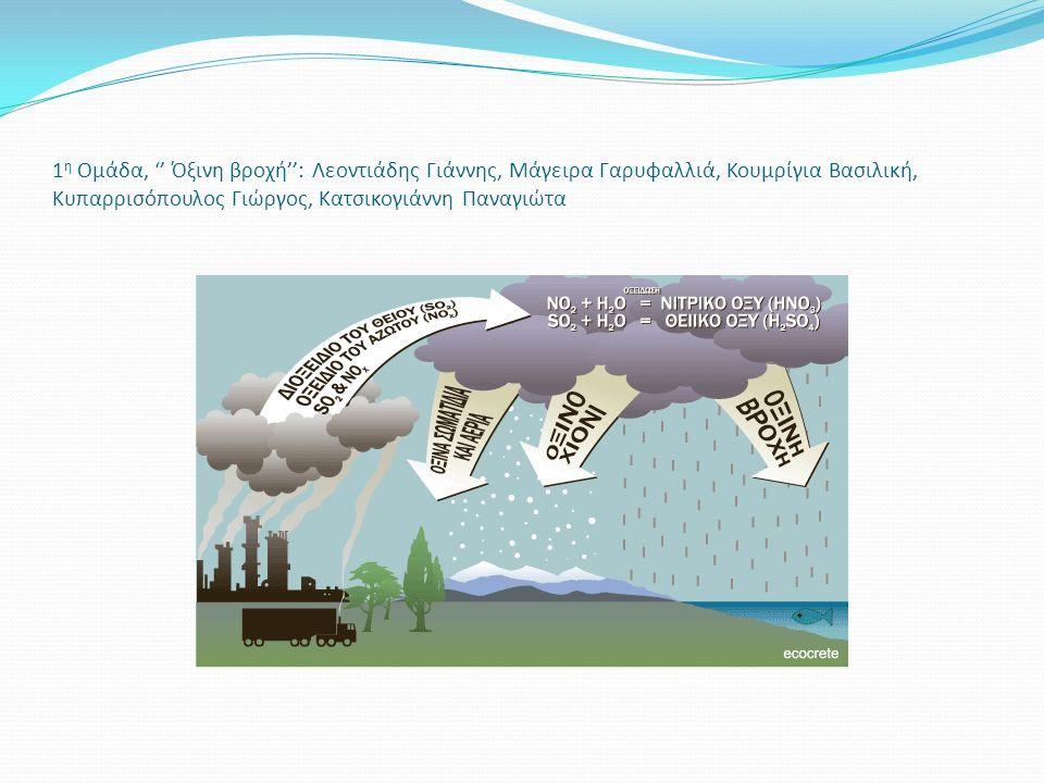 1 η Ομάδα, '' Όξινη βροχή'': Λεοντιάδης Γιάννης, Μάγειρα Γαρυφαλλιά, Κουμρίγια Βασιλική, Κυπαρρισόπουλος Γιώργος, Κατσικογιάννη Παναγιώτα