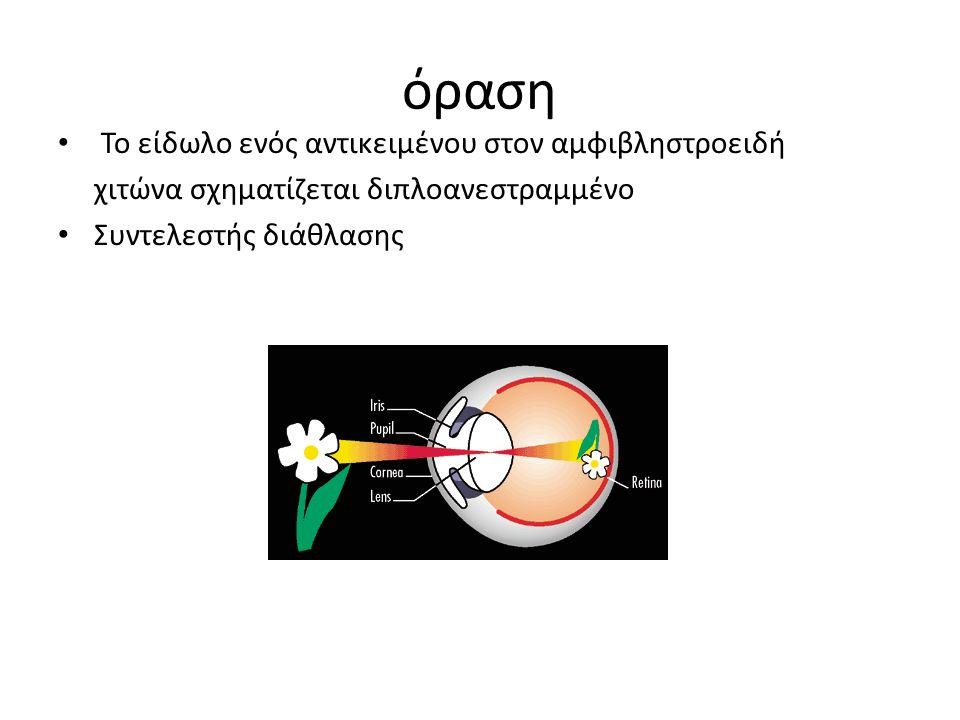 όραση Το είδωλο ενός αντικειμένου στον αμφιβληστροειδή χιτώνα σχηματίζεται διπλοανεστραμμένο Συντελεστής διάθλασης