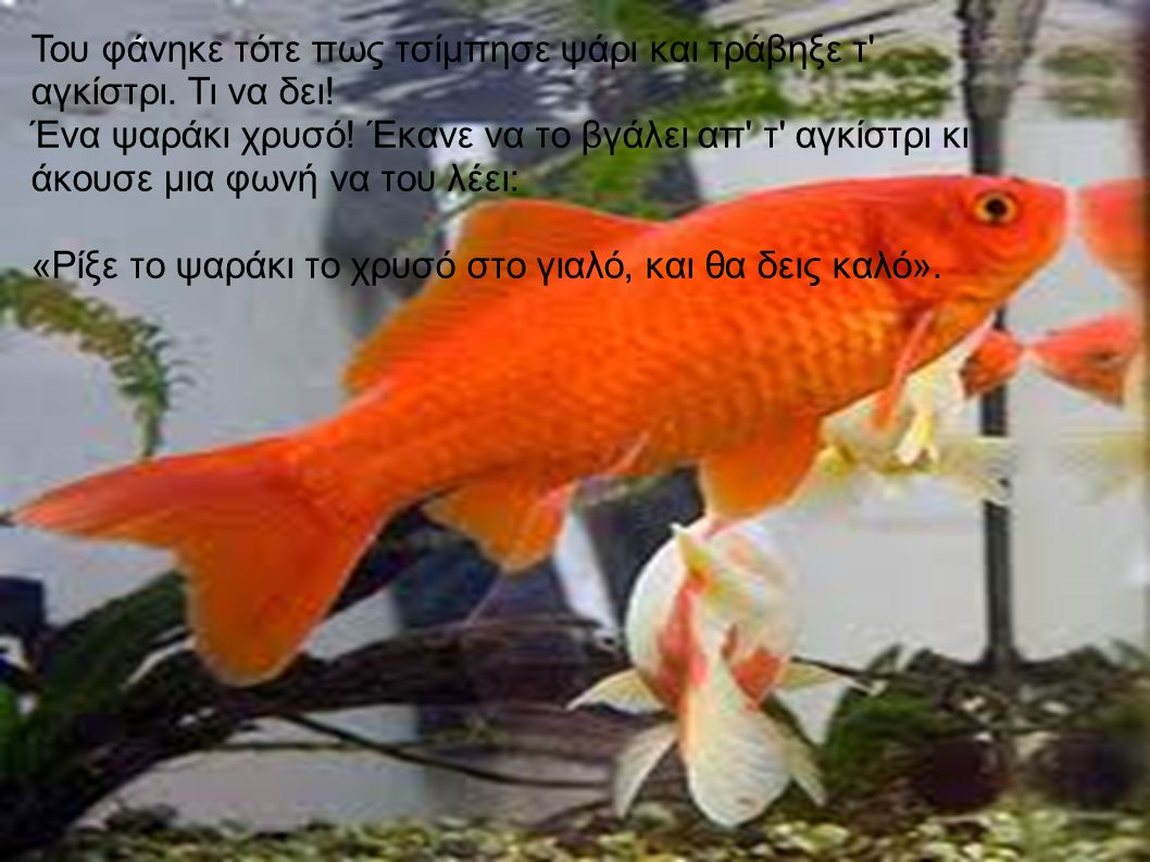 Του φάνηκε τότε πως τσίμπησε ψάρι και τράβηξε τ' αγκίστρι. Τι να δει! Ένα ψαράκι χρυσό! Έκανε να το βγάλει απ' τ' αγκίστρι κι άκουσε μια φωνή να του λ