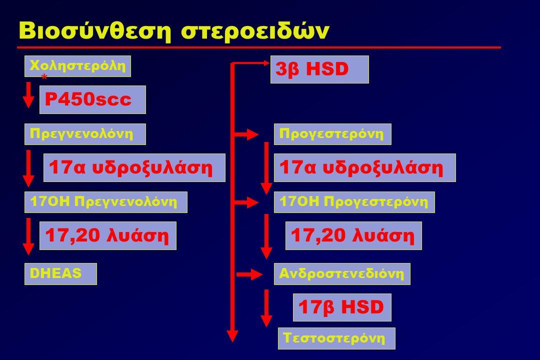 Χοληστερόλη ΠρεγνενολόνηΠρογεστερόνη 17ΟΗ Προγεστερόνη17ΟΗ Πρεγνενολόνη Ανδροστενεδιόνη Τεστοστερόνη DHEAS Βιοσύνθεση στεροειδών P450scc 17α υδροξυλάση 17,20 λυάση 17α υδροξυλάση 17,20 λυάση 17β HSD 3β HSD *