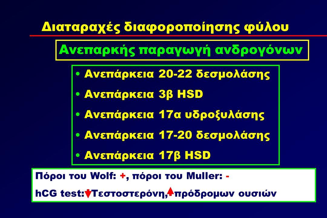 Διαταραχές διαφοροποίησης φύλου Ανεπαρκής παραγωγή ανδρογόνων Ανεπάρκεια 20-22 δεσμολάσης Ανεπάρκεια 3β HSD Ανεπάρκεια 17α υδροξυλάσης Ανεπάρκεια 17-20 δεσμολάσης Ανεπάρκεια 17β HSD Πόροι του Wolf: +, πόροι του Muller: - hCG test: Τεστοστερόνη, πρόδρομων ουσιών