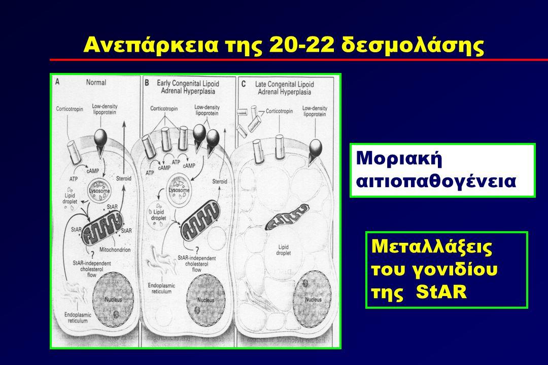 Μοριακή αιτιοπαθογένεια Μεταλλάξεις του γονιδίου της StAR Ανεπάρκεια της 20-22 δεσμολάσης