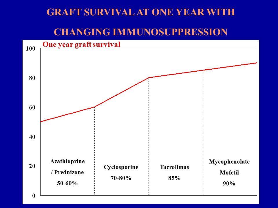 C Y C L O S P O R I N - A Συνήθης δόση 4-7mg/kgΣΒ/ημερησίως Προσδιορισμός επιπέδων στο αίμα (~ 200ng/ml) Ανεπιθύμητες ενέργειες Nεφροτοξικότητα λειτουργική μείωση σπειραματικής διήθησης δομική Ηπατοτοξικότητα Αρτηριακή υπέρταση Υπερτρίχωση Υπερτροφία ούλων Νευρολογικές διαταραχές Υπεργλυκαιμία ισομετρική κενοτοπίωση σωληναρίων ταινιοειδής ίνωση διάμεσου ιστού αγγειοπάθεια