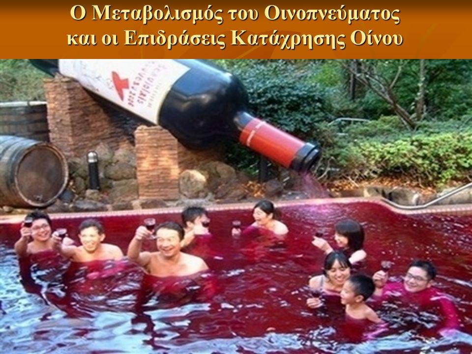 Ο Μεταβολισμός του Οινοπνεύματος και οι Επιδράσεις Κατάχρησης Οίνου