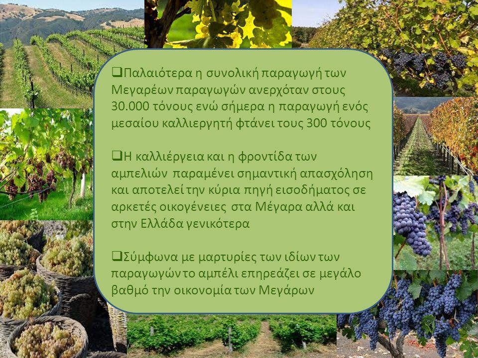 ΚΡΑΣΙ ΚΑΙ ΟΙΚΟΝΟΜΙΑ Το κρασί αποτελεί βασικό παράγοντα στην οικονομία της χώρας.