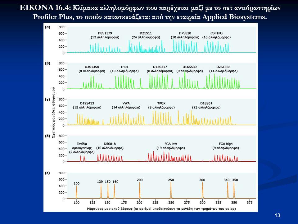 13 ΕΙΚΟΝΑ 16.4: ΕΙΚΟΝΑ 16.4: Κλίμακα αλληλομόρφων που παρέχεται μαζί με το σετ αντιδραστηρίων Profiler Plus, το οποίο κατασκευάζεται από την εταιρεία Applied Biosystems.