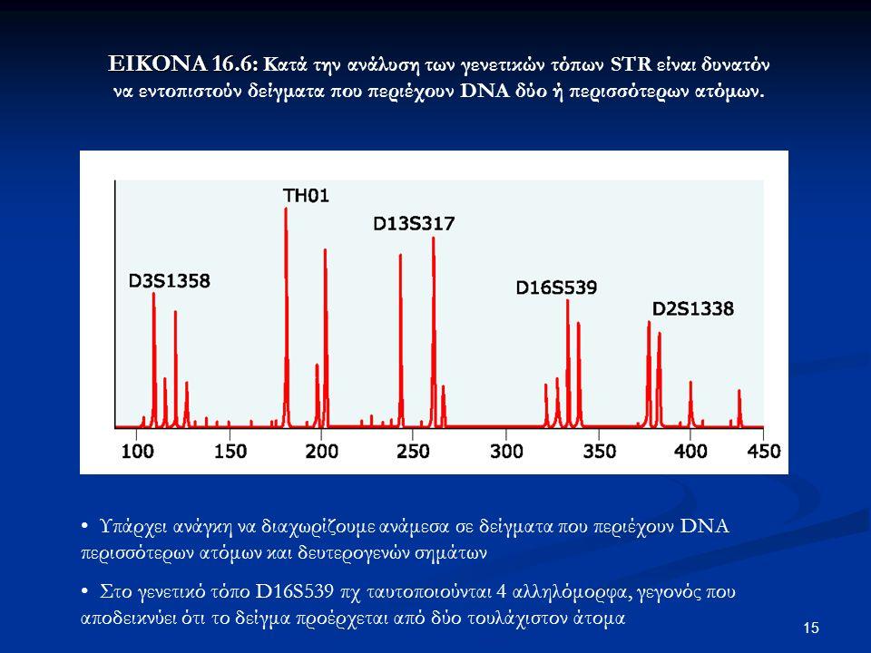 15 ΕΙΚΟΝΑ 16.6: ΕΙΚΟΝΑ 16.6: Κατά την ανάλυση των γενετικών τόπων STR είναι δυνατόν να εντοπιστούν δείγματα που περιέχουν DNA δύο ή περισσότερων ατόμω