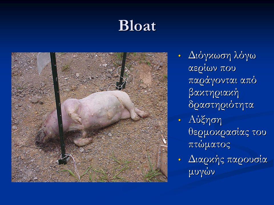 Bloat Διόγκωση λόγω αερίων που παράγονται από βακτηριακή δραστηριότητα Διόγκωση λόγω αερίων που παράγονται από βακτηριακή δραστηριότητα Αύξηση θερμοκρ