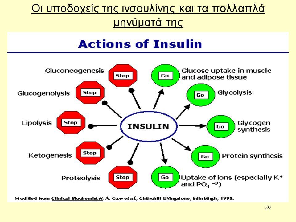 29 Οι υποδοχείς της ινσουλίνης και τα πολλαπλά μηνύματά της