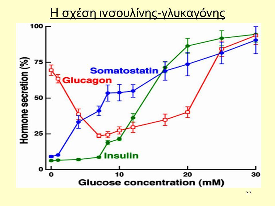 35 Η σχέση ινσουλίνης-γλυκαγόνης