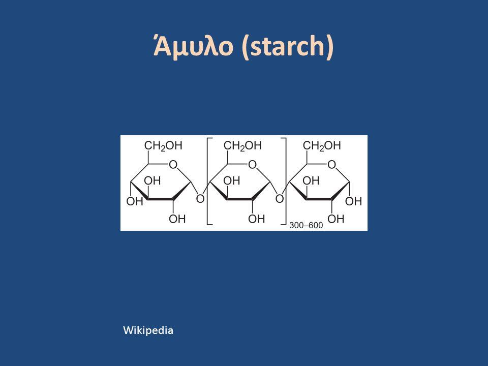 Άμυλο (starch) Wikipedia