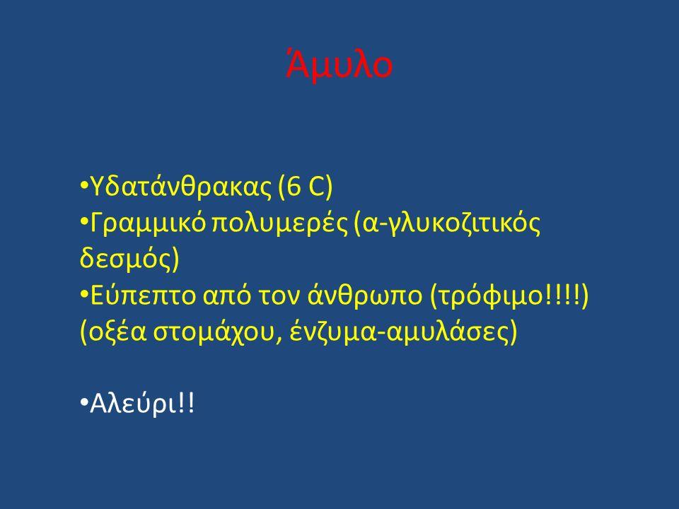 Άμυλο Υδατάνθρακας (6 C) Γραμμικό πολυμερές (α-γλυκοζιτικός δεσμός) Εύπεπτο από τον άνθρωπο (τρόφιμο!!!!) (οξέα στομάχου, ένζυμα-αμυλάσες) Αλεύρι!!