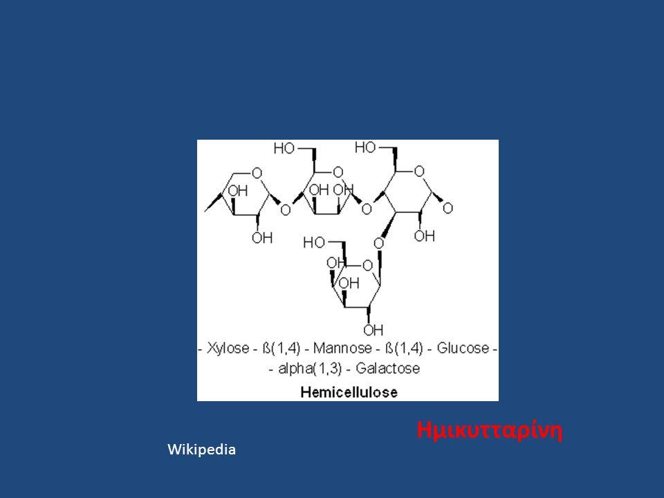 Ημικυτταρίνη Wikipedia