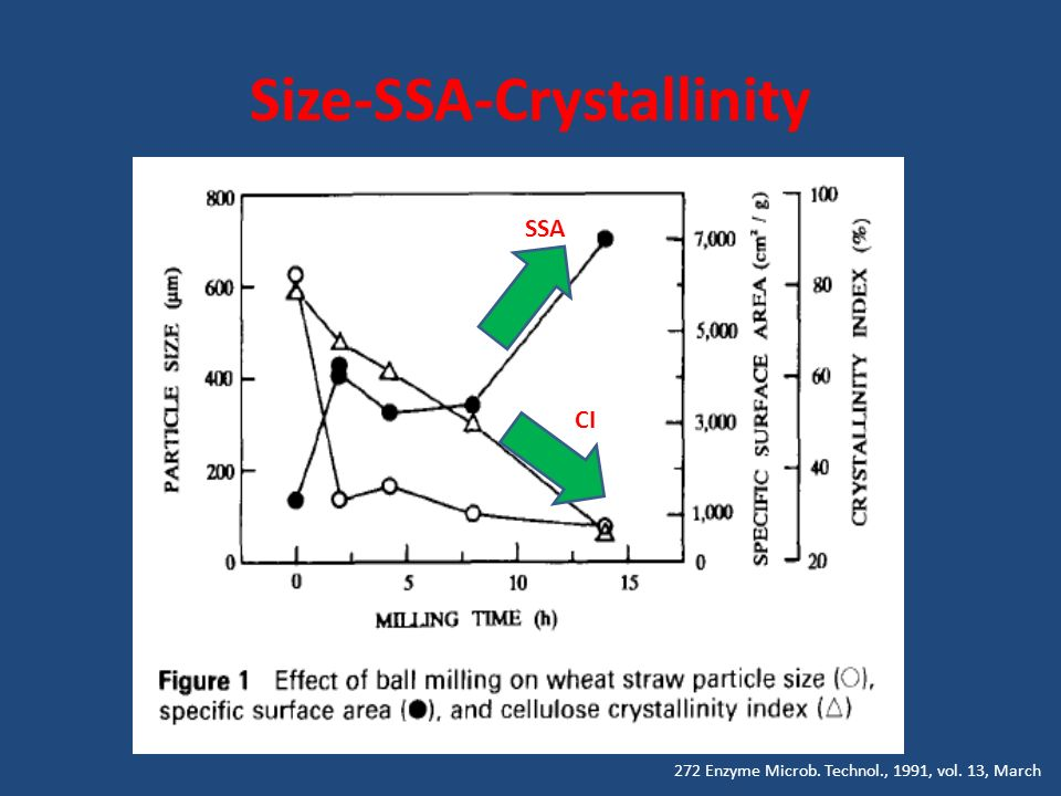 Size-SSA-Crystallinity 272 Enzyme Microb. Technol., 1991, vol. 13, March SSA CI