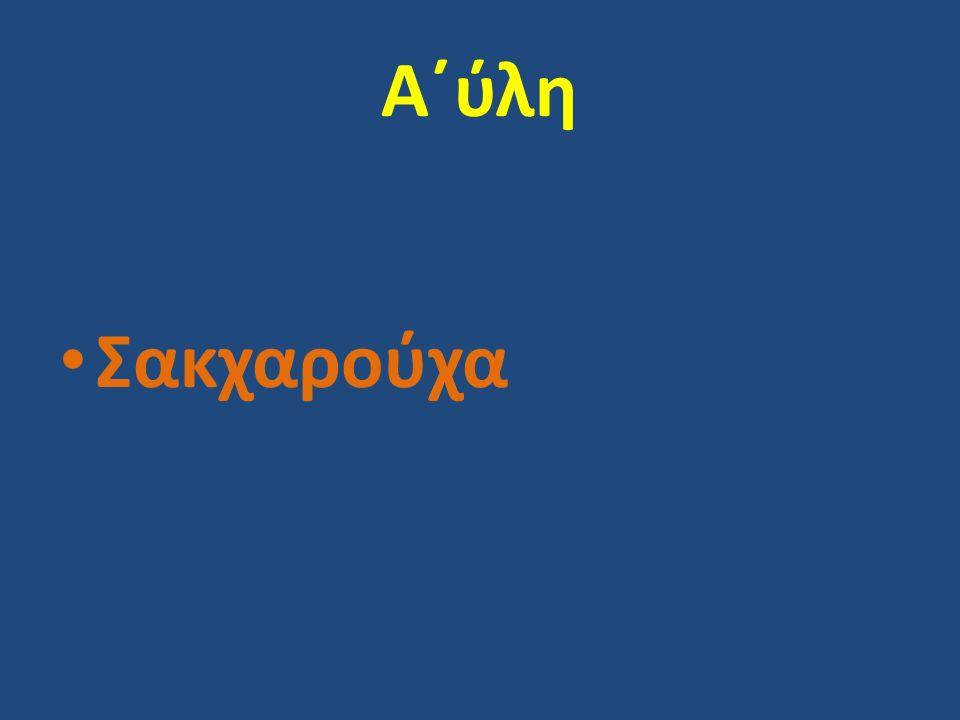 Α΄ύλη Σακχαρούχα