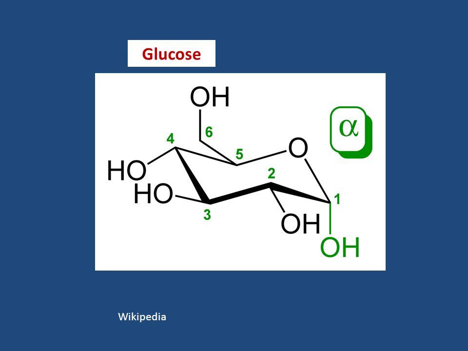 Wikipedia Glucose