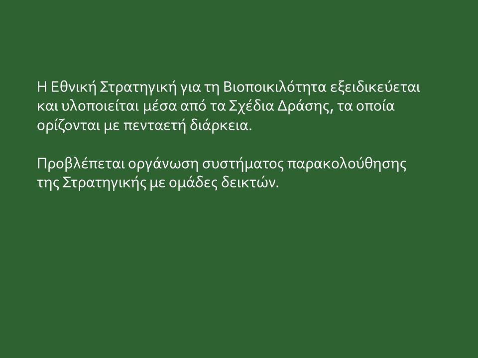 Η Εθνική Στρατηγική για τη Βιοποικιλότητα εξειδικεύεται και υλοποιείται μέσα από τα Σχέδια Δράσης, τα οποία ορίζονται με πενταετή διάρκεια. Προβλέπετα