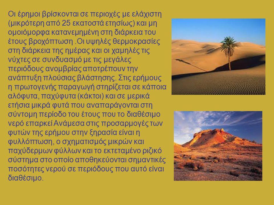Στις ερήμους τα ζωικά είδη αντιπροσωπεύονται από λίγα μεγάλα σπονδυλόζωα όπως η αντιλόπη, άφθονα τρωκτικά που ζουν σε τρύπες μέσα στο έδαφος, πτηνά όπως η στρουθοκάμηλος και διάφορα είδη εντόμων.Τα ζώα της ερήμου, επιβιώνοντας σε συνθήκες υψηλών θερμοκρασιών και ξηρασίας, έχουν αναπτύξει πολυάριθμες προσαρμογές (μείωση της εφίδρωσης, περιορισμένη κατανάλωση του ελεύθερου νερού, κατανάλωση τροφών μεγάλης περιεκτικότητας σε νερό, αποφυγή της έκθεσης τους στον ήλιο - ανάπτυξη νυκτόβιας δραστηριότητας κ.λπ.).