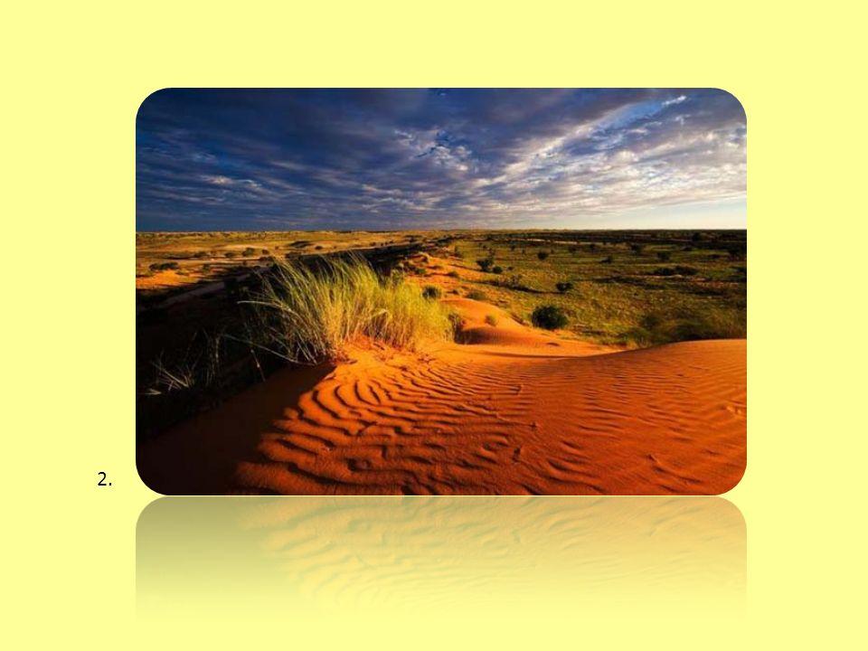 Έρημοι της Αφρικής Οι ερημικές περιοχές καταλαμβάνουν το ένα τρίτο της επιφάνειας της Γης και βρίσκονται σε όλες τις ηπείρους.