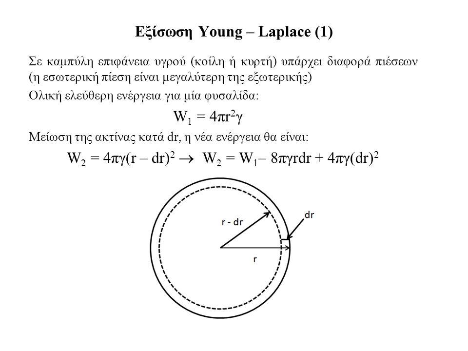 Εξίσωση Young – Laplace (1) Σε καμπύλη επιφάνεια υγρού (κοίλη ή κυρτή) υπάρχει διαφορά πιέσεων (η εσωτερική πίεση είναι μεγαλύτερη της εξωτερικής) Ολική ελεύθερη ενέργεια για μία φυσαλίδα: W 1 = 4πr 2 γ Μείωση της ακτίνας κατά dr, η νέα ενέργεια θα είναι: W 2 = 4πγ(r – dr) 2  W 2 = W 1 – 8πγrdr + 4πγ(dr) 2