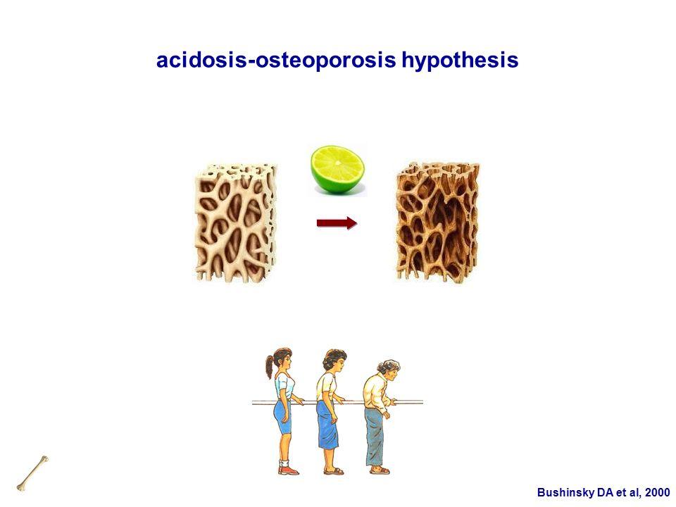 Bushinsky DA et al, 2000 acidosis-osteoporosis hypothesis