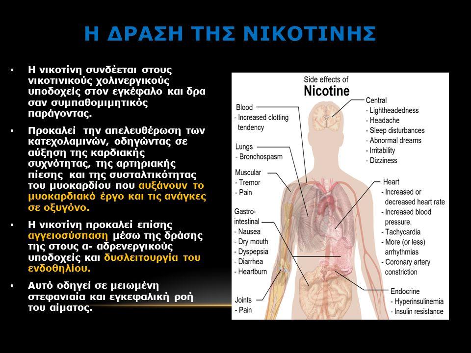 Η ΔΡΑΣΗ ΤΗΣ ΝΙΚΟΤΙΝΗΣ Η νικοτίνη συνδέεται στους νικοτινικούς χολινεργικούς υποδοχείς στον εγκέφαλο και δρα σαν συμπαθομιμητικός παράγοντας.