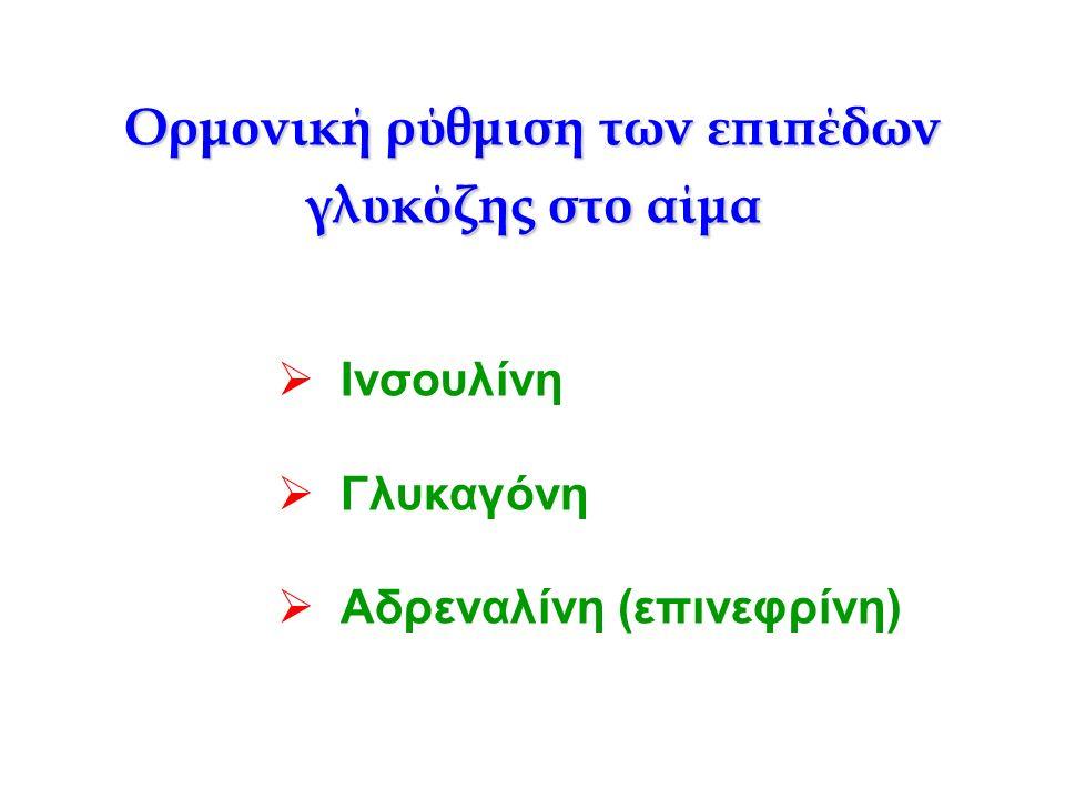 Ορμονική ρύθμιση των επιπέδων γλυκόζης στο αίμα  Ινσουλίνη  Γλυκαγόνη  Αδρεναλίνη (επινεφρίνη)