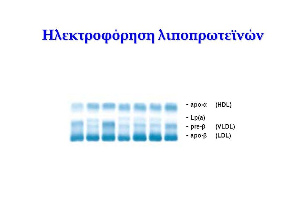 - apo-α(HDL) - Lp(a) - pre-β(VLDL) - apo-β(LDL) Ηλεκτροφόρηση λιποπρωτεϊνών