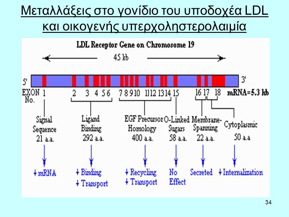 34 Μεταλλάξεις στο γονίδιο του υποδοχέα LDL και οικογενής υπερχοληστερολαιμία
